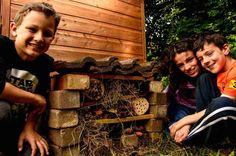 How to build a bug shelter.