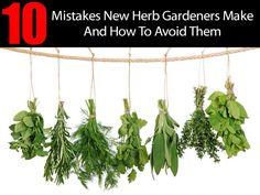 gardenin mistakes