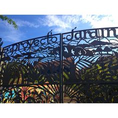 A trip to Proyecto Jardin, Boyle Heights Los Angeles, CA.  A very latergram 4 of 4. Beginning as the Community Garden in 1999 to meet the ne...