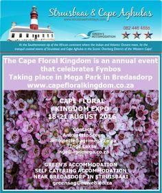#FynbosExpo #OverbergEvents #CapeExpo #Flowers
