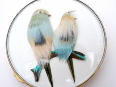 Vintage Gucci Compact Feather Bird Blue Feathers Compact Mirror Paris Vanity   Collectibles, Vanity, Perfume & Shaving, Compacts   eBay!