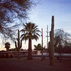 Tucson, AZ in Arizona