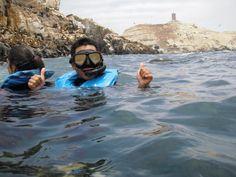 Islas Palomimo, un lugar perfecto para  hacer snorkeling, no te asustes si ves varios lobos a tu alrededor