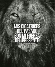 Ya no duele, ya no duele, ya no due. Gods Love Quotes, Best Quotes, Business Motivation, Life Motivation, Motivational Phrases, Inspirational Quotes, Cute Spanish Quotes, Lion Quotes, Millionaire Quotes
