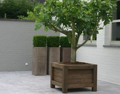 34 Best Wood Planter Tree Box Images In 2019 Wood
