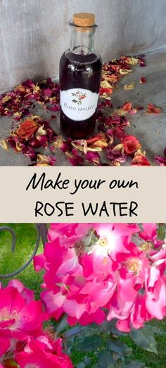Rose water is great for all skin types, from young to troublesome, over-sensitive to the already demanding older complexion. It is also suitable for fine children's skin and for allergy sufferers. Rosewater is so widely used due to its superb smooth harmonizing effects, but also its high ability to moisturize and lightly tone the skin. Uses For Rose Water, Rose Water For Skin, Healing Herbs, Medicinal Herbs, Natural Oils, Natural Skin Care, Health And Beauty Tips, Health Tips, Natural Parenting