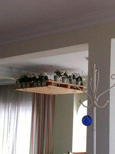 étagères en palette de bois pour les fleurs de maison