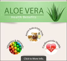 23 Amazing Benefits and Uses Of Aloe Vera For Skin, Hair And Health