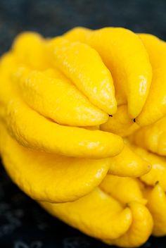 Lemons to Lemonade on Pinterest | Limoncello, Lemon and Limoncello ...