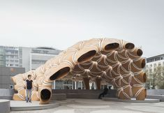 ICD/ ITKE Research Pavilion is based on sea-urchin shells Pavilion Architecture, Contemporary Architecture, Art And Architecture, Sea Urchin Shell, Design Projects, Facade, Lion Sculpture, University, Interior Design