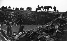British troops with horses on the Ypres Salient, Belgium, 1918 Photo: ALAMY