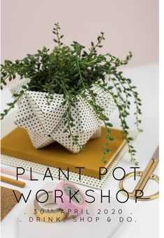 Origami Plant Pot Workshop . London UK, learn to fold your own beautiful succulent plant pot with Origami Est an award winning provider of workshops & tutorials Artificial Succulents, Planting Succulents, Potted Plants, Origami Artist, Origami Boxes, Workshop, Stationery, Tutorials, London