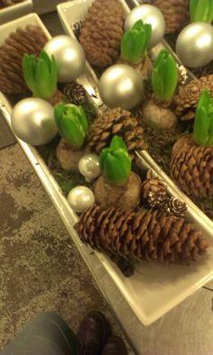 Juledekorasjon in the making Xmas, Christmas, Stuffed Mushrooms, Vegetables, Food, Yule, Yule, Meal, Essen