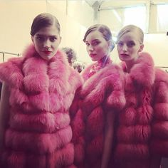 Pink fox furs