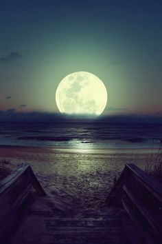Fall asleep on the beach with a moon like this!
