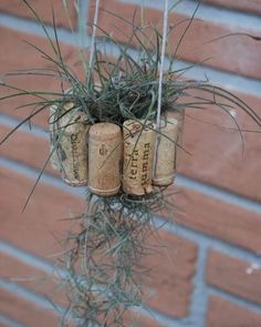 From Instructables.com  Hanging Air Plant Basket from Recycled Wine Corks  Tag 2 friends who will love this!  Wanna get featured? Just tag @best_upcycler  #best_upcycler on your posts and follow us to get a chance to be featured!  DM us for paid shoutout!  Check out the link on my bio to buy & sell great items! Re-post by Hold With Hope