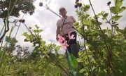 Terra de Minas - Cientistas visitam fazendas de Araxá para conhecer e pesquisar plantas medicinais   globo.tv