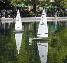 Order as Art: Synchronized Sailboats