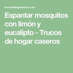 Espantar mosquitos con limón y eucalipto - Trucos de hogar caseros