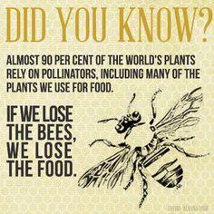 bees = good