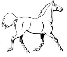 Coloring Sheets Of Horses : Running Horse Coloring Pages. Native Horse Coloring Pages. Coloring Sheets Of Horses. Puppy Coloring Pages, Cat Coloring Page, Coloring Book Art, Coloring Pages For Kids, Coloring Sheets, Free Coloring, Free Horses, Running Horses, Free Printable Coloring Pages