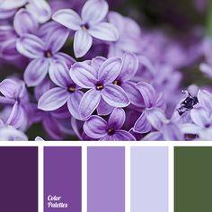 Color Palette #3238