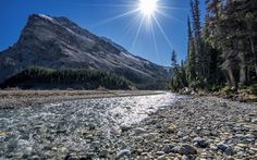 Download wallpapers Bow lake, Mountain lake, rocks, summer, forest, Alberta, Canada