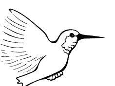 Dibujos de colibri para niños - Imagui