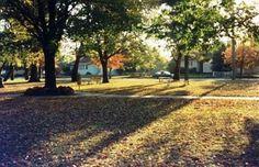 Gardens along Parkway -Yallourn