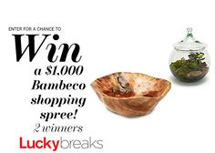 Enter here to win one of 2 bambeco shopping sprees—worth $1,000 each! #sweepstakes #EnterToWin #EcoChic
