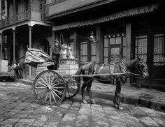 A New Orleans milk cart, New Orleans, La. 1903.Vintage New Orleans photography,New Orleans art print.