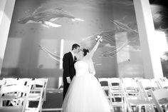 One of my favorite wedding photos at the Virginia aquarium