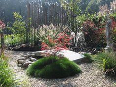 fontein-japanse-esdoorn-beeld-bloeiende-vaste-planten-utrecht