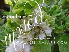 Acorn Lane Vintage Living Period Living, Acorn, Wedding Blog, Herbs, Plants, Vintage, Tassel, Herb, Plant