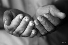 Recevoir ce qu'on désire Male Hands, His Hands, Human Reference, Art Reference, Photo Main, Giving Hands, Lady Of Lourdes, Hand Photography, Realistic Paintings