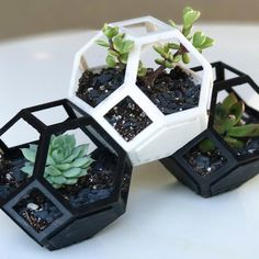 Free print files Plantygon - Modular Geometric Stacking Planter for Succulents, printfutura 3d Printed Fabric, 3d Printed House, 3d Printed Objects, 3d Printing Diy, 3d Printing Business, 3d Printing Service, Cool 3d Prints, Useful 3d Prints, 3d Printer Designs