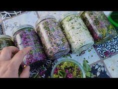 Tratament pentru genunchi cu flori de liliac. - YouTube