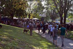 Bei bestem Tettnanger Festwetter fand am vergangenen Sonntag den 14. September 2014 das 39. Bähnlesfest in Tettnang statt. Bereits spät in der Nacht bauten die ersten Flohmarktbetreiber ihre Stände in der oberen Innenstadt um...