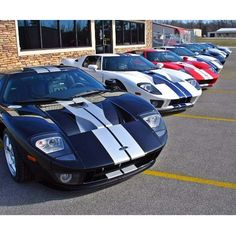 So many Ford GT's