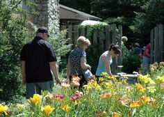 The Secret Garden Tour is a MUST attend in the summer!