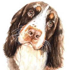 Do you want a funny dog portrait or a hilarious cat portrait you can hang on your wall as a great conversation starter? Animal Sketches, Animal Drawings, Dog Drawings, Watercolor Animals, Watercolor Paintings, Watercolor Paper, Watercolors, Unusual Art, Animal Photography