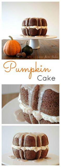 Pumpkin Cake | livforcake.com