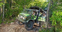 Jungle Maya Expedition