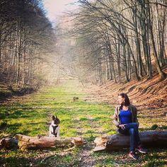 Sieh dir Instagram-Fotos und -Videos von Engelbert Bernadett (@szivarlany) an Videos, Photo And Video, Park, Instagram, Outdoor Decor, Pictures, Parks