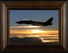 Fly By Todd Thunstedt 20x26 Patriotic Soldier Military Bill Rights Constitution George Washington Lincoln Reagan Bald Eagle General West Point F22 Raptor Pilot Framed Art Print Wall Décor Picture ThunderMark Art and Graphics http://www.amazon.com/dp/B014ELLKZY/ref=cm_sw_r_pi_dp_DH44vb1JCE2R7