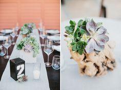 Celebración con decoración de cactus y plantas suculentas. (Green Wedding Shoes) driftwood and succulents