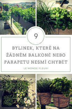 Balcony Garden, House Plants, Sidewalk, Heart, Flowers, Diy, Floral, World, Balconies