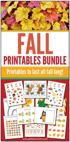 The Fall Printables Bundle from Gift of Curiosity includes more than 450 pages of fall learning printables for kids ages 2 to 8. This bundle features colored leaves, apples, pumpkins, umbrellas, and other fall imagery. Plus, there's a wide variety of printable activities spanning multiple subjects across the curriculum. There's something in this bundle for everyone! #fall #autumn #giftofcuriosity #giftofcuriosityprintables #printables || Gift of Curiosity Pre Reading Activities, Fall Preschool Activities, Apple Activities, Creative Activities For Kids, Printable Activities For Kids, Fall Arts And Crafts, Measurement Activities, Fall Coloring Pages, Colored Leaves
