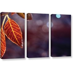 Brushstone Fall Lights 3-pc. Gallery Wrapped Canvas Wall Art (€245) ❤ liked on Polyvore featuring home, home decor, wall art, fall wall art, 3 piece canvas wall art, set of 3 wall art, set of three wall art and set of 3 canvas wall art