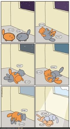 Sunbeams are good kitty pacifiers. From the web comic cats versus human